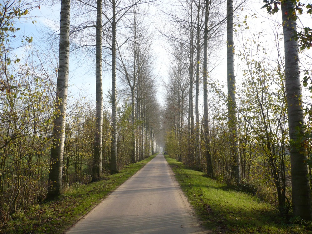 Wandeling Bachte-Maria-Leerne (6/6)