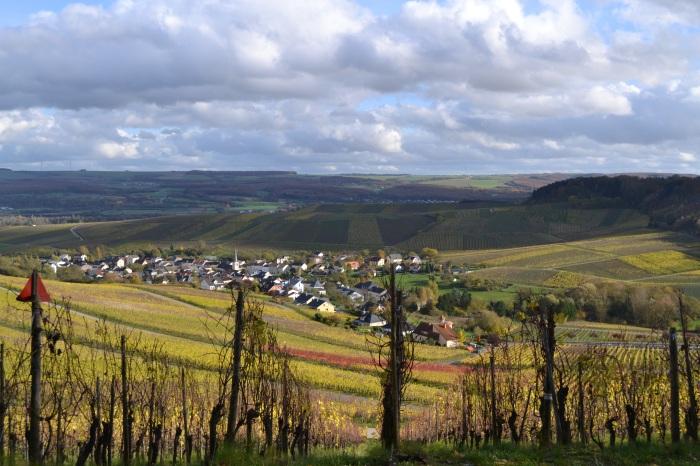 zicht op de Moezelvallei op weg tussen Remich en Mondorf les Bains