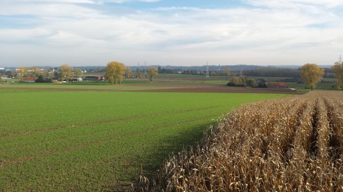 open landbouwgebied met zicht op Oudenaarde